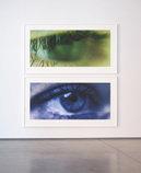Eye Diptych (#01), 2012