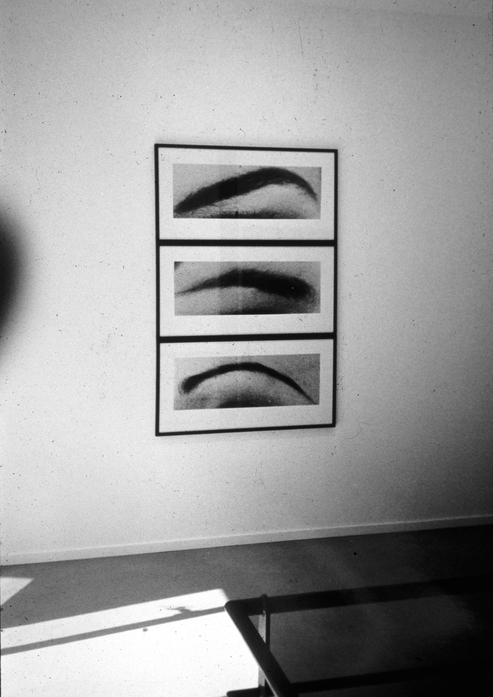 Eyebrow Triptych, 1996