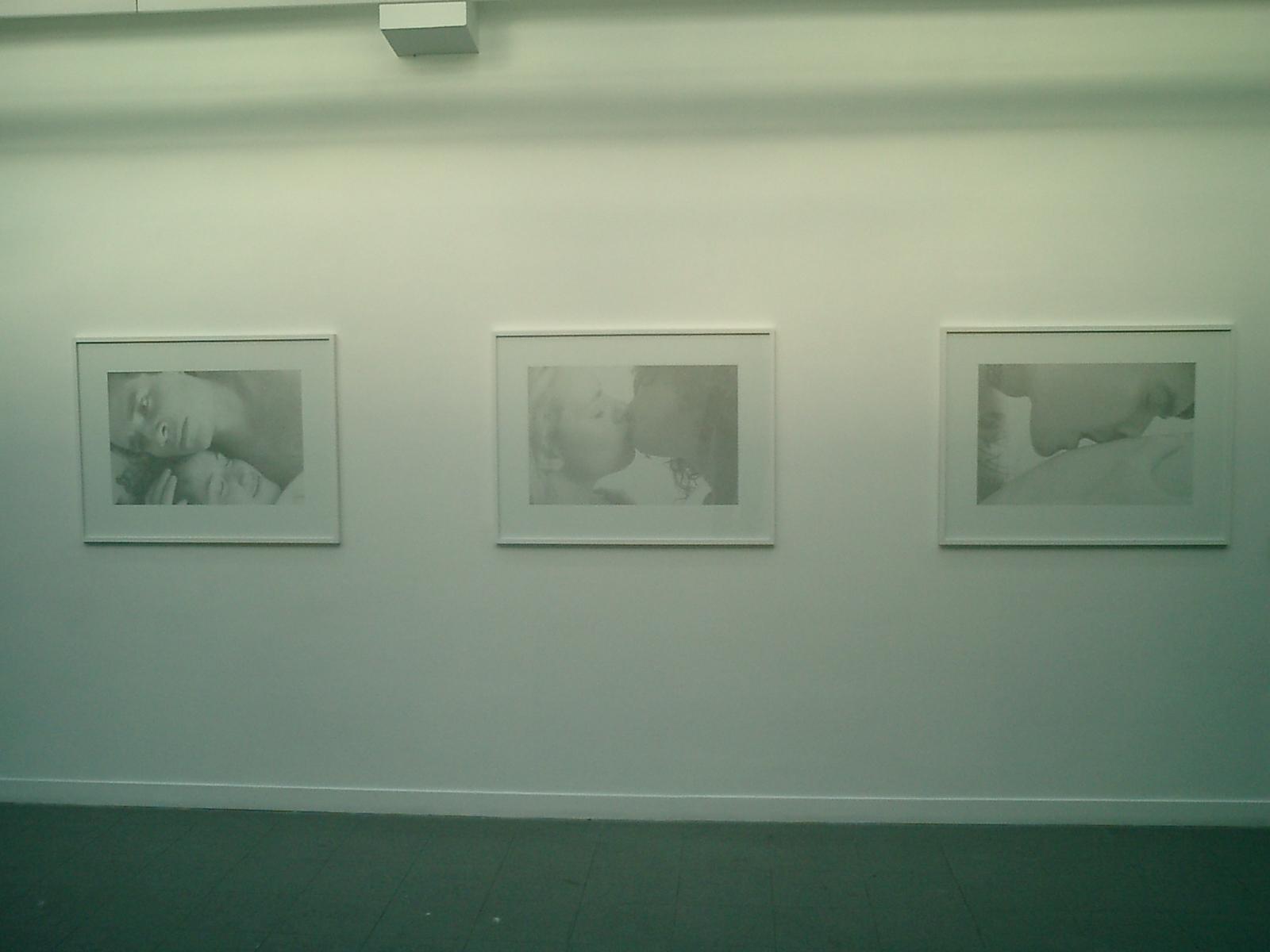 White Dahlia,  2003, Installation view